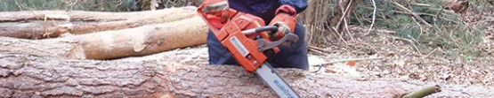 Chainsaw Operation - EXCEL TRAINING